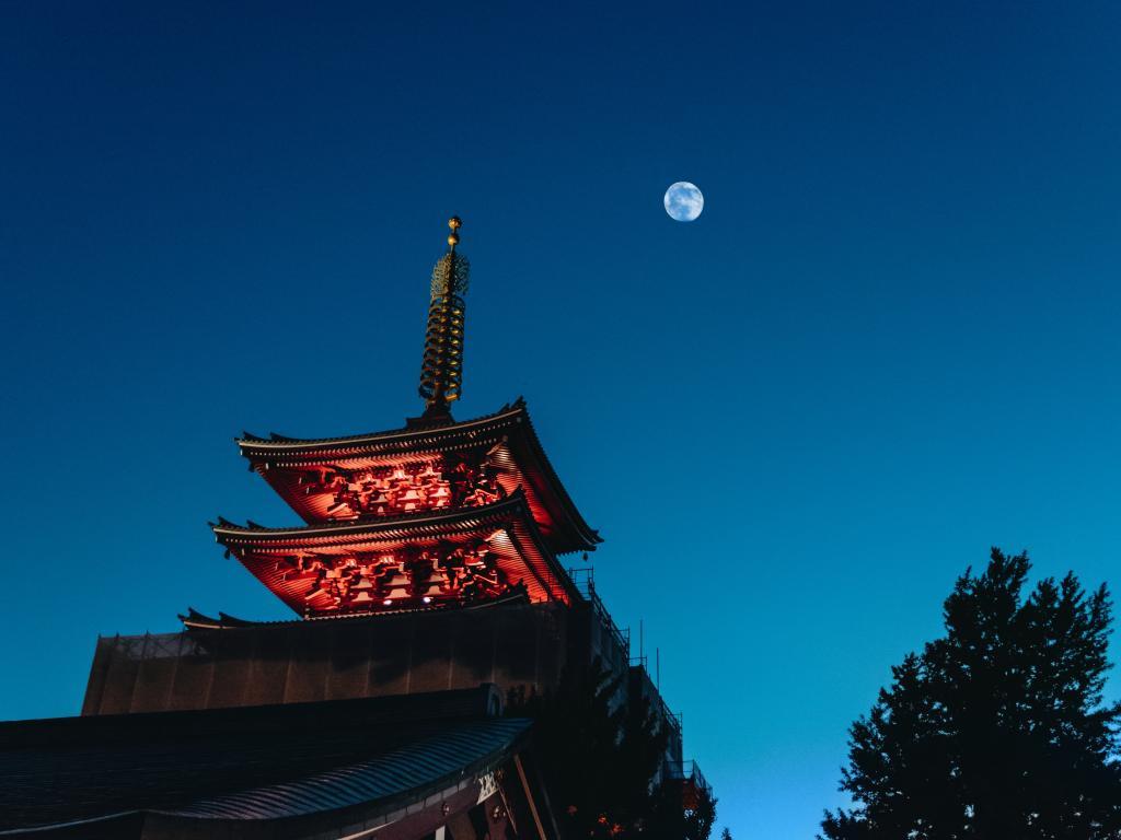 japan travel guide tourradar
