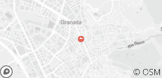 The Sound and City of Granada : Travel Package - 1 destination