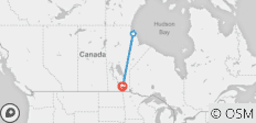 Polar Bears in Manitoba (6 Days) - 3 destinations