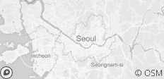 Seoul Welcome Package 4D/3N - 1 destination