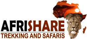 Afrishare Trekking And Safaris