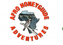 Afro Honeyguide Adventures