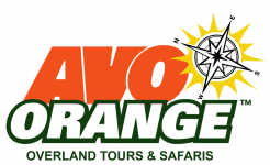 Avo Orange Adventure Travel