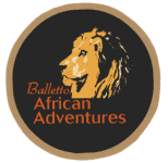 Balletto African Adventures
