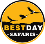 Bestday Safaris