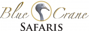 Bluecrane Safaris Namibia