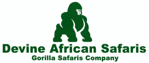 Devine African Safaris Ltd
