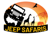 Jeep Safaris and Tours