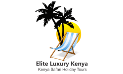 Kenya safari Holiday Tours