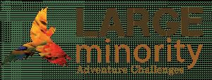 Large Minority Ltd