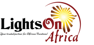 Lights on Africa Destinations & Safaris