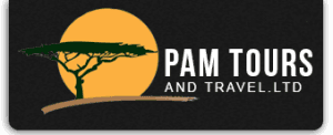 Pam Tours and Travel