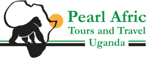 PearlAfric Tours & Travel