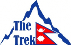 The Tour Trek and Travel Nepal Pvt. Ltd