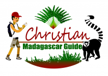 Tours in Madagascar