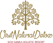 Visit Natural Detox Resort
