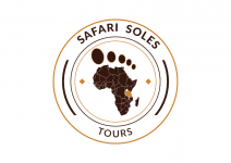 Safari Soles tours
