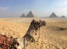 Wonders of the Pharaohs Tour