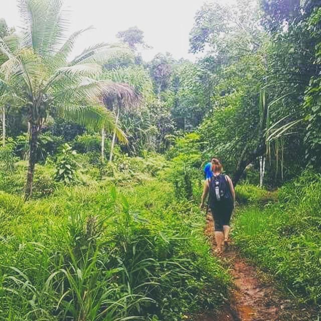 Wanderlands Fiji Travel Reviews