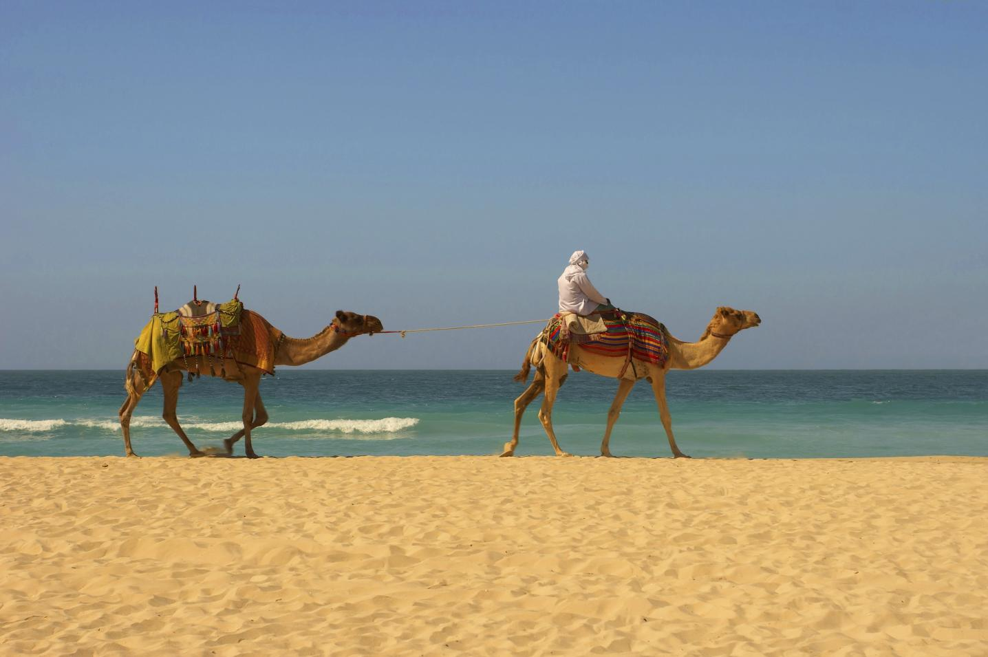 Destination Services Morocco