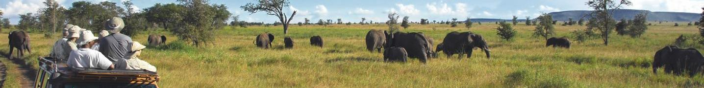 All SedAdventures Tours and Safaris