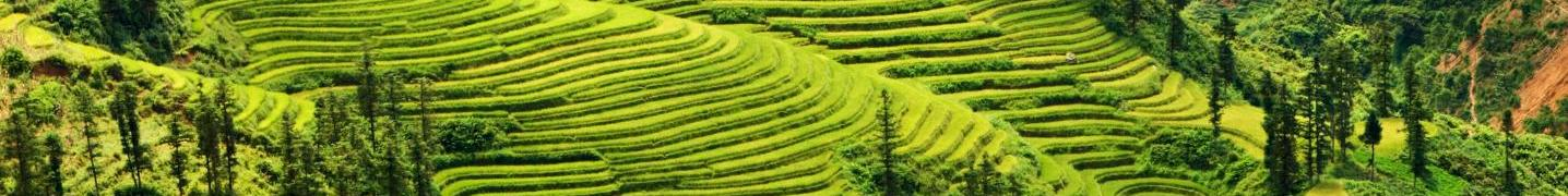 Northwest Vietnam Tours & Trips 2017/2018