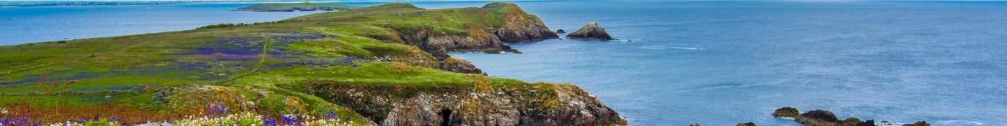 Ring of Kerry Tours & Trips