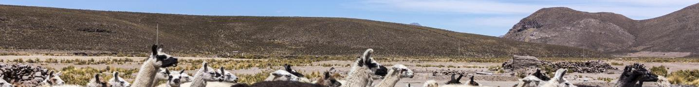 Andes Mountains Tours & Trips 2018/2019
