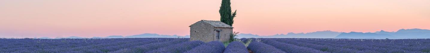 Provence Tours & Trips 2017/2018