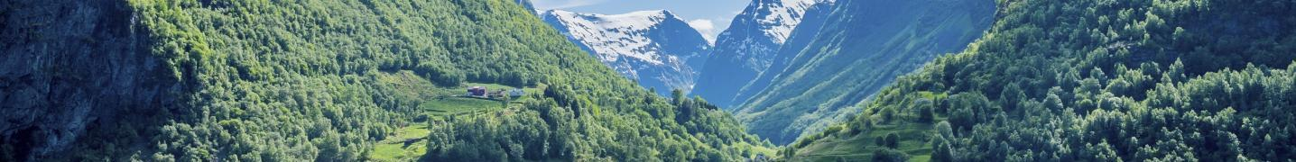 Norwegian Fjords Tours & Trips 2017/2018