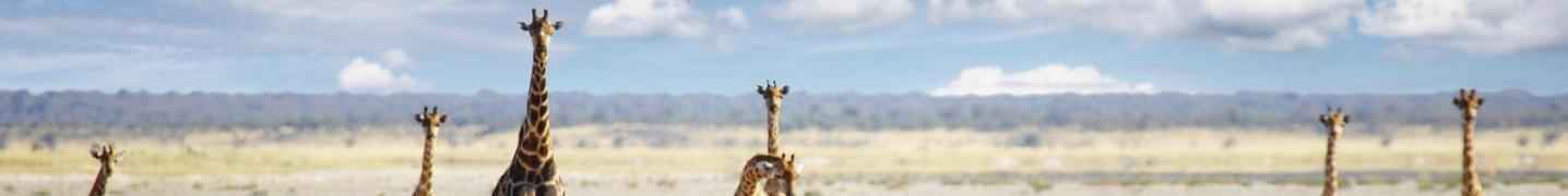 The Great African Rift Valley Tours & Trips 2019
