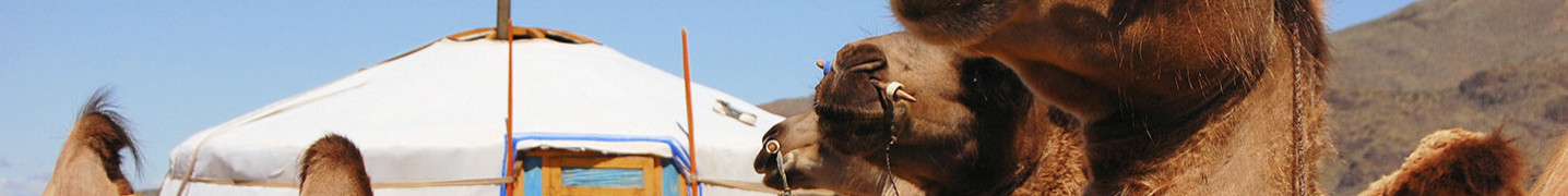 All Mongolia Nomadic of Blue Sky Tours