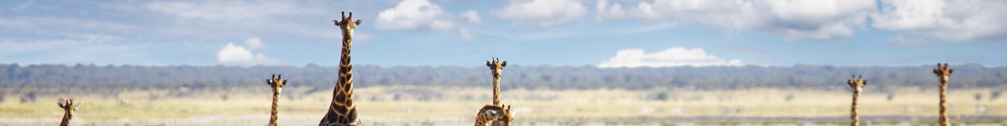 Namibia in August 2018 Tours & Trips