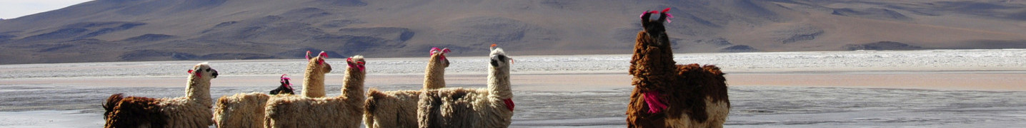 7 day / 1 week Tours of Bolivia