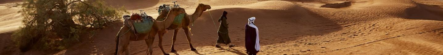 All Morocco Sahara Desert Travel Tours