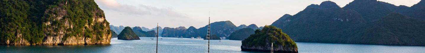 All Halong Lavender Cruises Tours