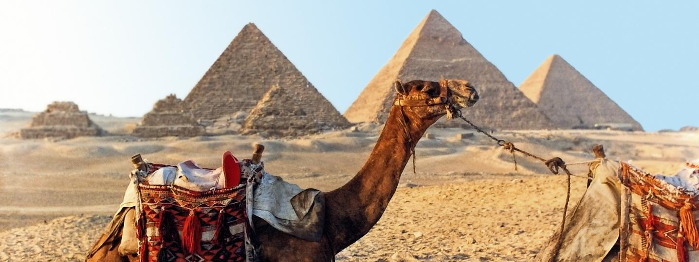 All Egypt Scenic Luxury Cruises & Tours