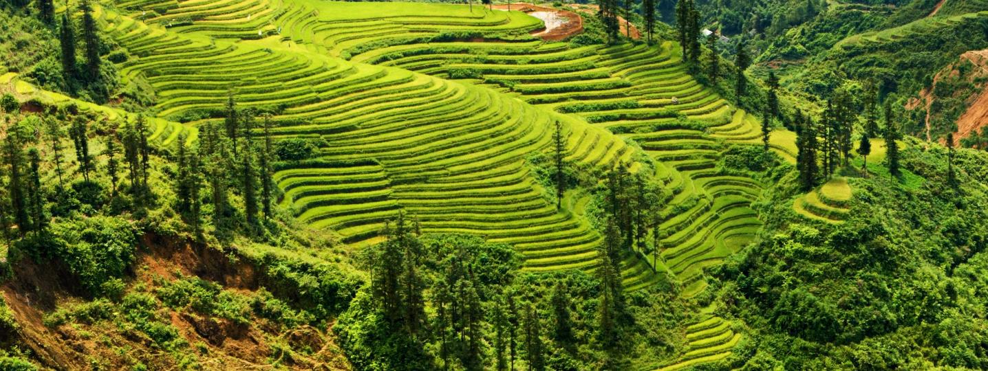 Northwest Vietnam Tours & Trips 2018/2019