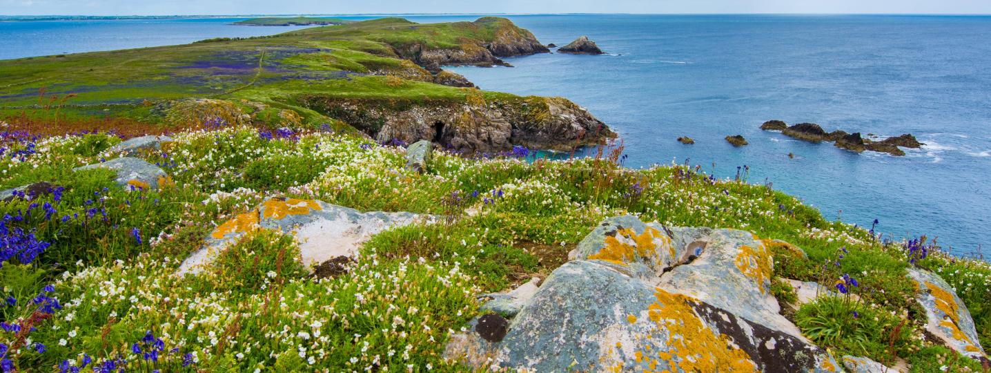 Ring of Kerry Tours & Trips 2018/2019