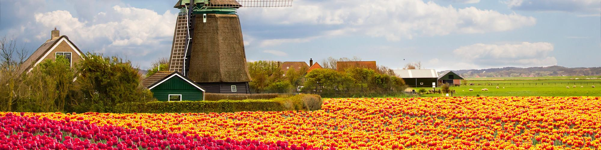 All Netherlands Avalon Waterways Tours