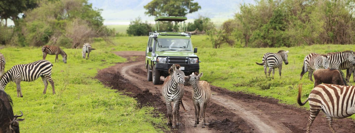 All Adventure Makers Tanzania Tours