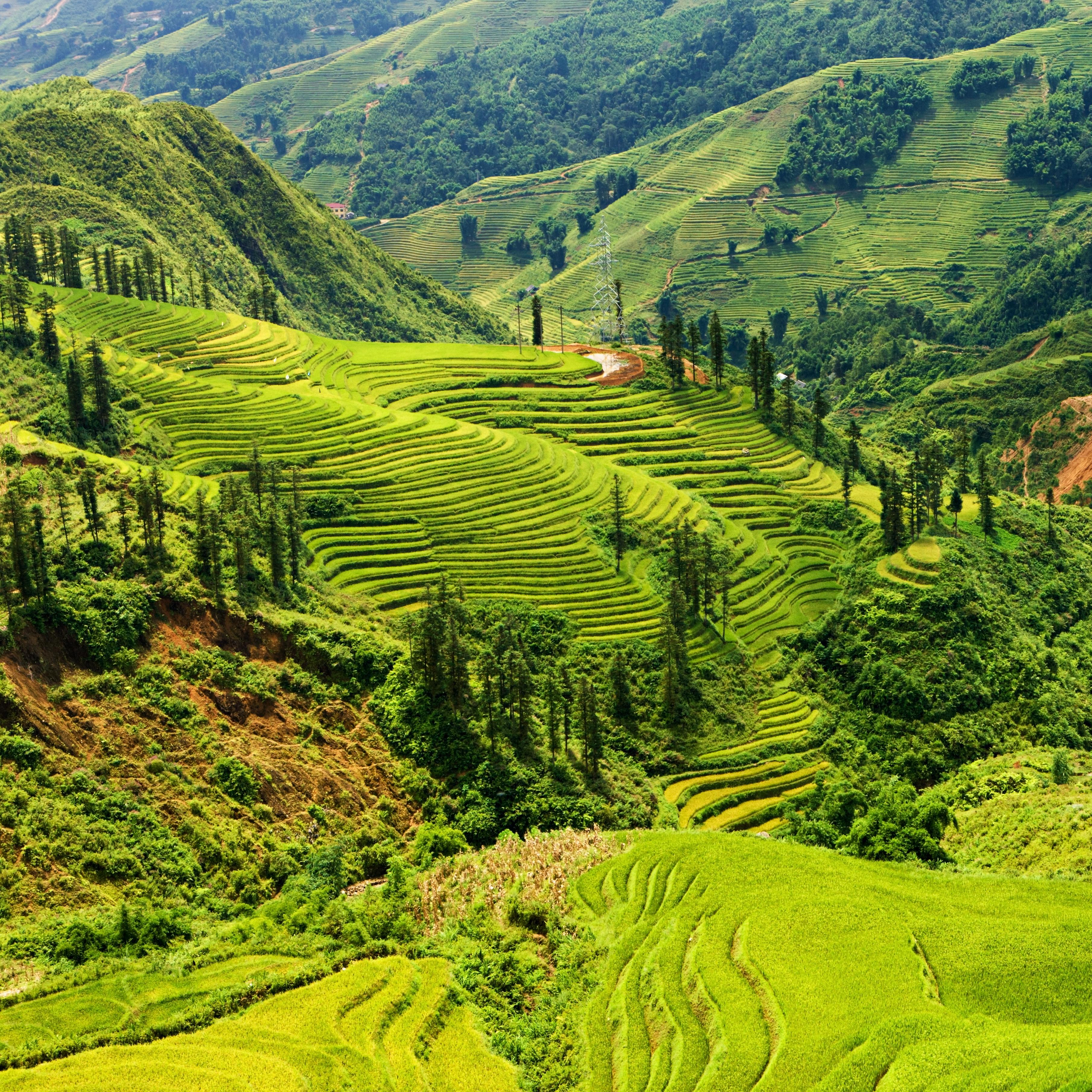 10 Best Northwest Vietnam Tours & Vacation Packages 2020