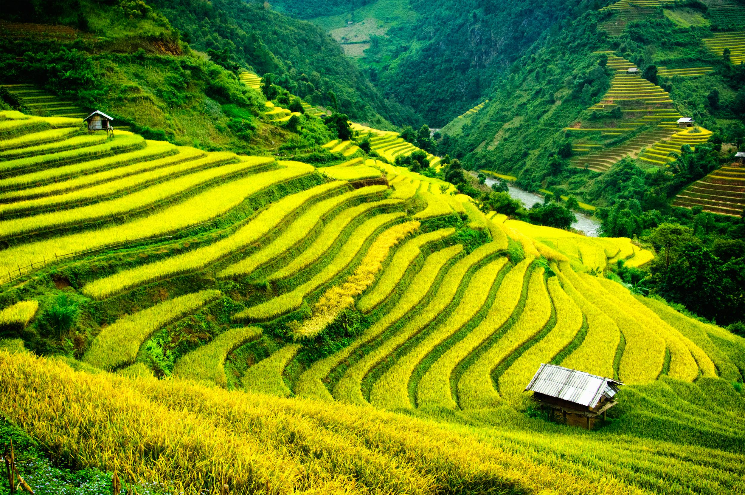 10 Best Laos Highlands Tours & Vacation Packages 2020
