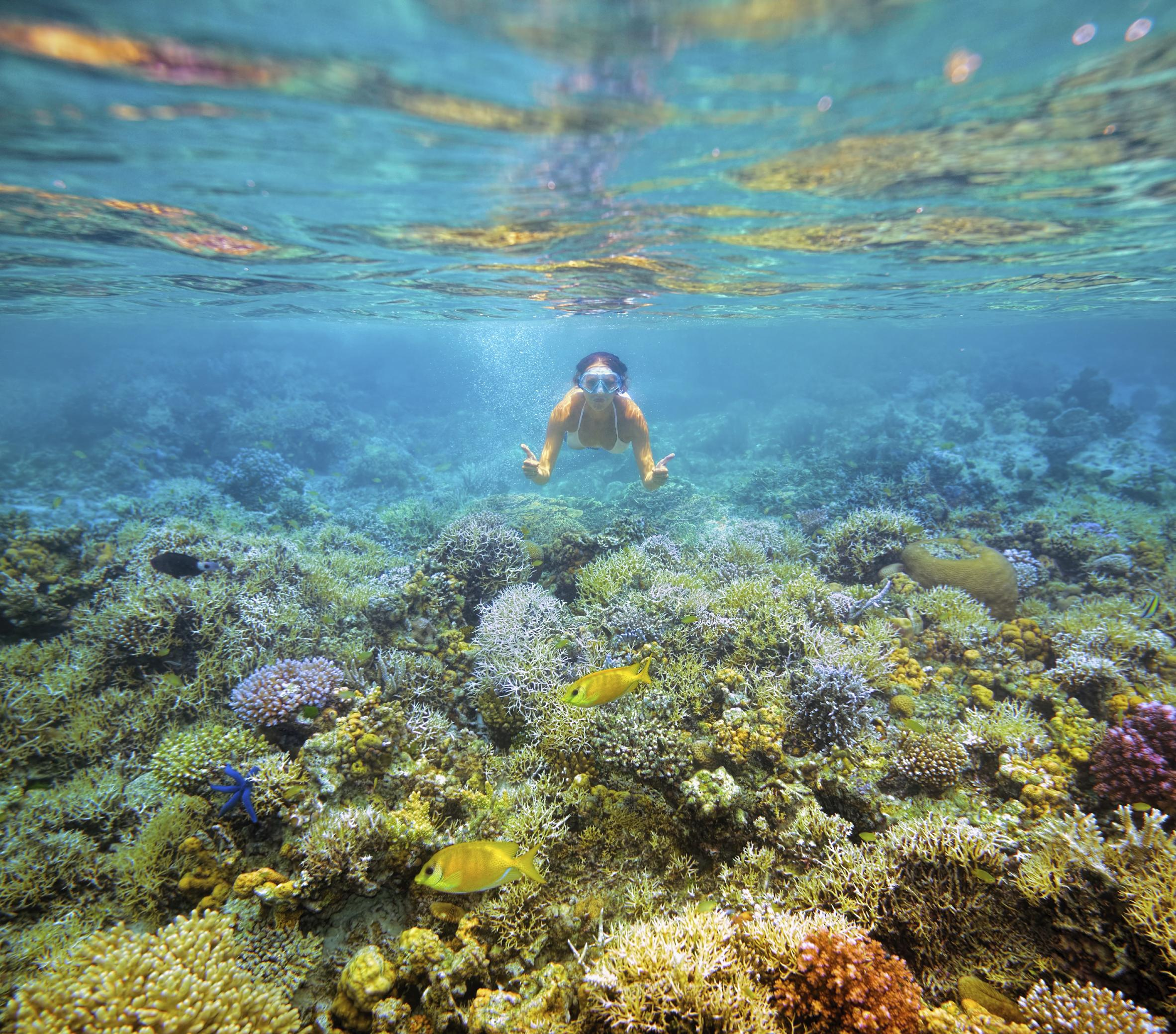 10 Best Luzon Island Tours & Vacation Packages 2020/2021