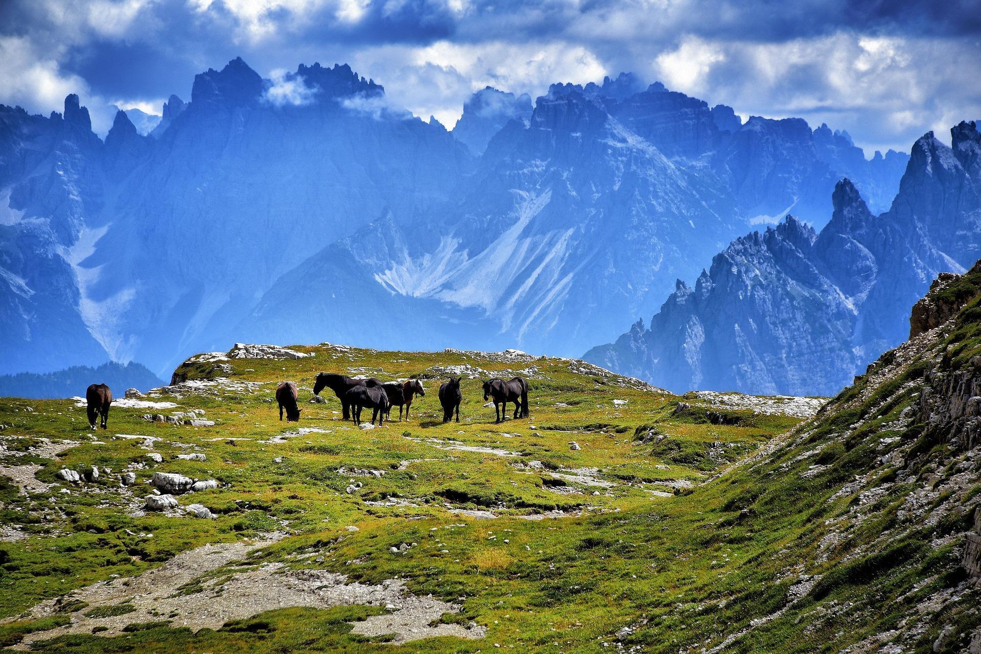 10 Best Italy Hiking Amp Trekking Tours 2019 2020 Tourradar