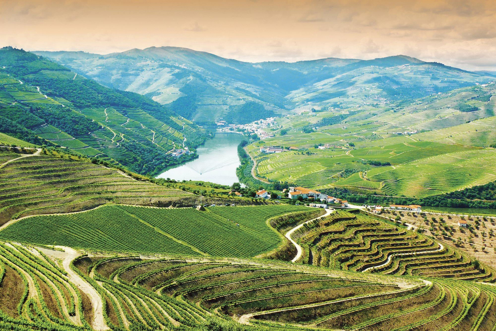 The 10 Best Douro River Cruises 2020 With 61 Reviews
