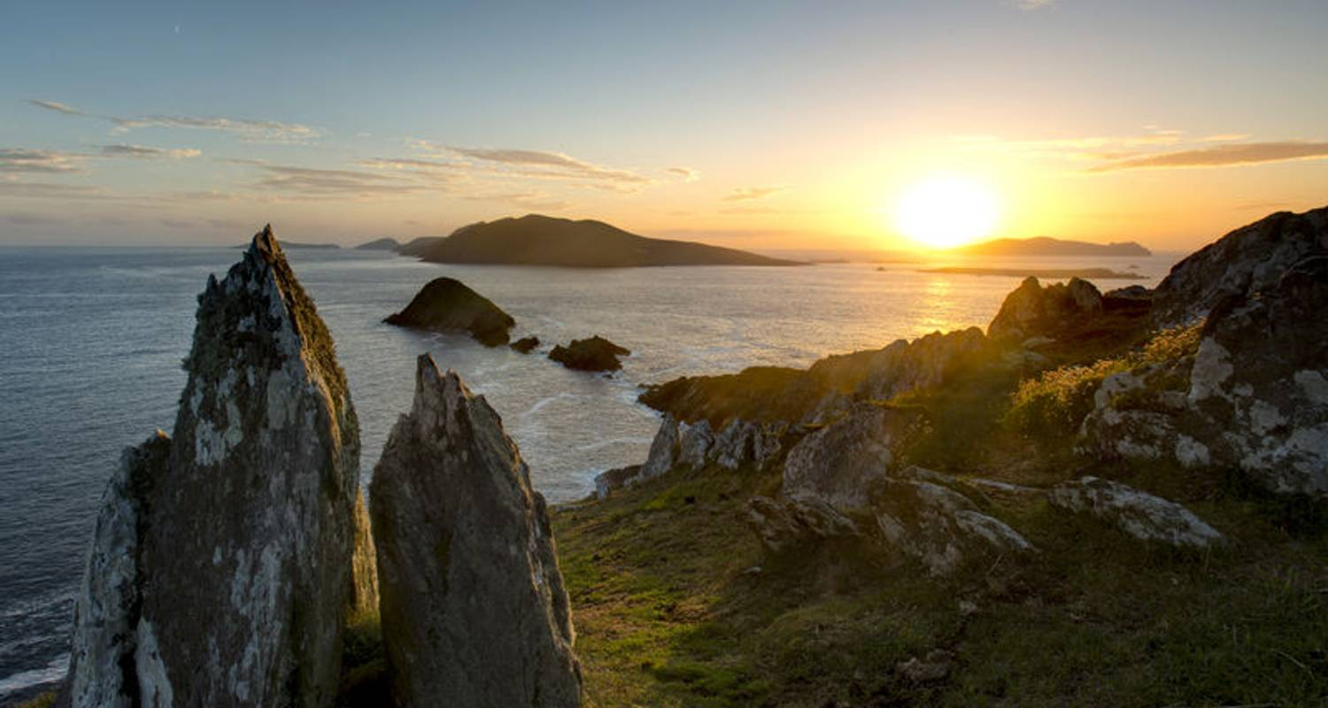 Wild South - Multi-Day - Small Group Tour of Ireland - Wild N' Happy