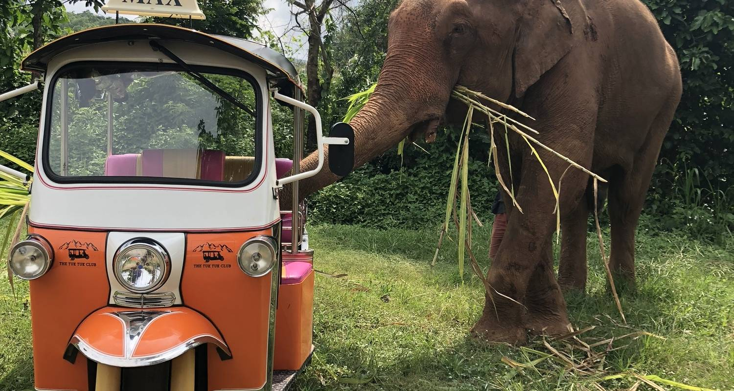 A 5 Day Tuk Tuk Adventure in beautiful Chiang Mai - The Tuk Tuk Club