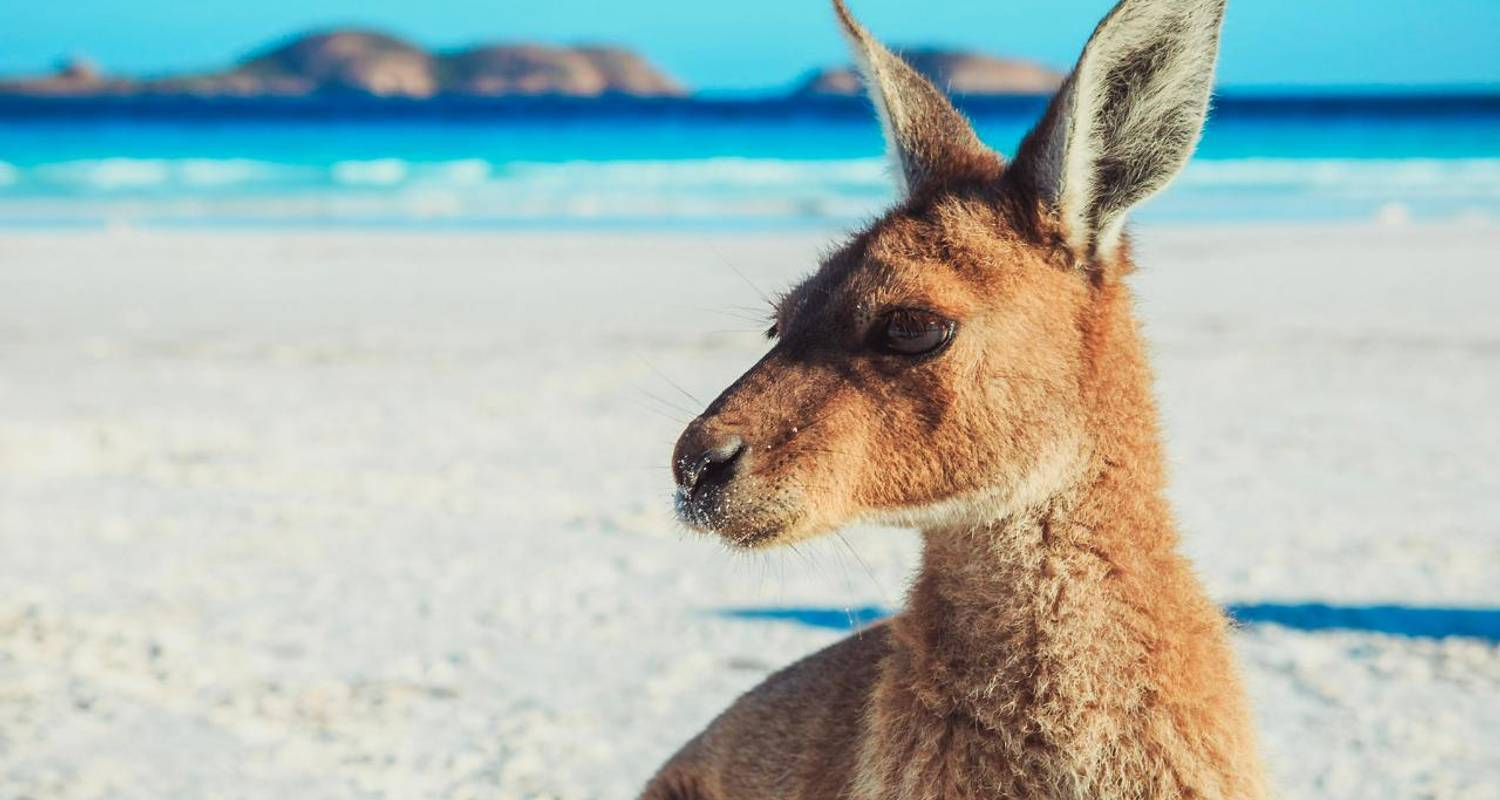10-Day Adelaide to Perth Overland Tour - Xplore Eyre