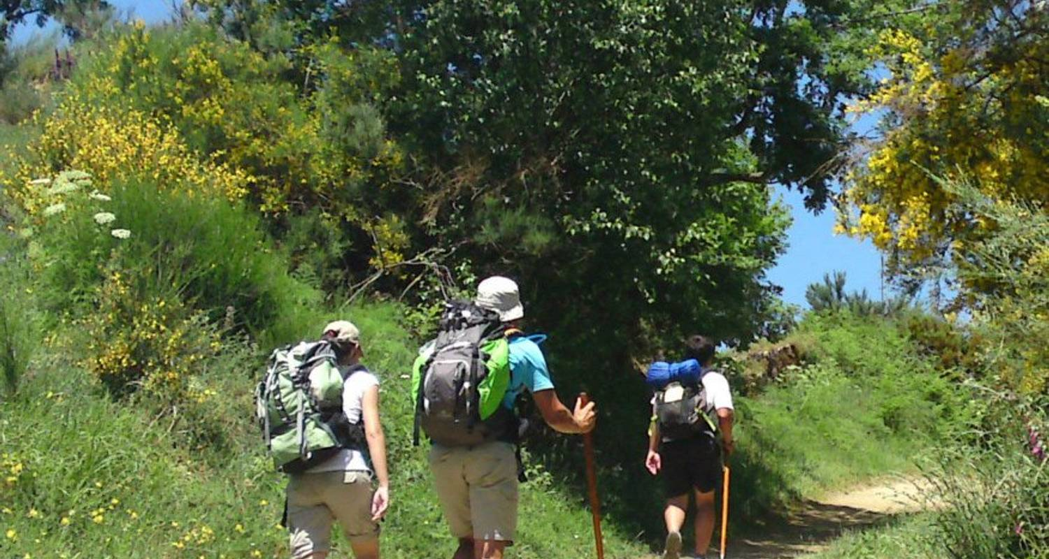 Self-Guided Walking on the Camino de Santiago - Exodus Travels